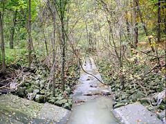 Modified River