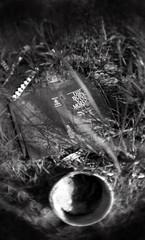 Die boek van Mormon (the book of Mormon) (Black/SilverPhoto ( indefinitely away)) Tags: film 35mm pentax mormon rodinal ilfordfp4 pentaxp30t fisheyeadapter epsonv700 smca50mmf2 20032004bloemfontein earlynegs