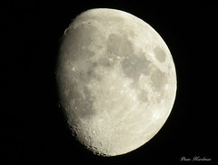 Cold Moon (Diane Marshman) Tags: november 2 sky moon canon powershot planet second phase lunar gibbous waxing celestial 2014 sx50