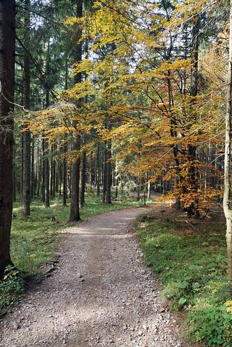 2014-10-12 Tegernsee 051 Ostiner Berg