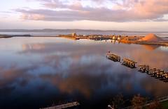 Leith Docks 107 (NikWatt) Tags: architecture scotland edinburgh fife piers sony konicaminolta greatcolors 1118mm greatscots edinburghphotographers nikwatt linerterminal windowsphotogallerylive