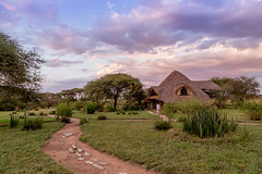 Tented camp in Serengeti