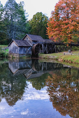 Mabry Mill (DeniseDewirePhotography) Tags: autumn reflection fall leaves rain blueridgeparkway mabrymill shadowsofdan
