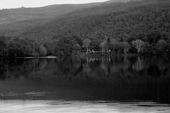 beautiful loch (Jacob Kazara) Tags: uk trees blackandwhite lake mountains detail reflection tree nature water beautiful woodland landscape scotland woods quiet ripple peaceful calm mysterious loch elegant