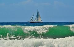 Sails Up (vgphotoz) Tags: ocean blue summer green beach water boat nikon waves huntington sails nikkor ahoy dockbay 55200mm outstandingromanianphotographers d3100 vgphotoz