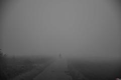 a man with a stroller in the Mist (First Fog of the Year 2 of 7) (PKub) Tags: blue sky white mist fog clouds photography photo smog haze nebel image stroller smoke snapshot picture himmel wolken objects nebula elements blau weiss kinderwagen gegenstnde 2014 elemente nikond5100 pkub