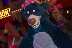 Mickey's Costume Party Cavalcade (heytherejere) Tags: disneyland disney baloo disneycastmembers thejunglebook disneyparks mickeyshalloweenparty mickeyscostumepartycavalcade