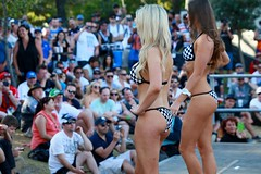 2014-10-24 Miss V8 Supercars GC600 491 (spyjournal) Tags: dreamcoat goldcoast dreamsport dreamcoatphotography dreamsportphotography v8superfest