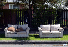 Two couches (stephen trinder) Tags: newzealand christchurch landscape junk pavement sidewalk nz waste discarded seating kiwi couches dumped christchurchnewzealand