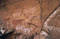 Plateau du Daski (ursulazrich) Tags: sahara hand cattle chad paintings bull rockart petroglyphs tchad tschad ciad ennedi tibesti gravuren garayeska plateaududaski daoyasko