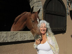 DawnGreenLosCedrosGM (Nancy D. Brown) Tags: arizona horse scottsdale stables loscedros dawngreen