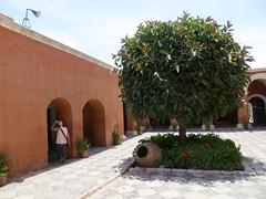 Arequipa-21