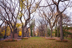 Fall in Central Park 2 (kayteeknee) Tags: new york city nyc newyorkcity travel autumn urban ny newyork fall tourism nature leaves landscape unitedstates natural centralpark cities changing destinations