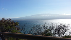 20141109_093918 (dntanderson) Tags: hawaii maui 2014 november09