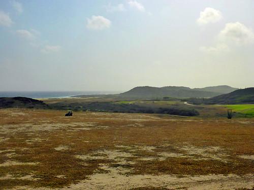 Aruba 2016 079
