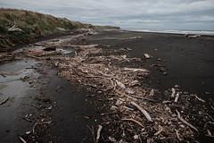 ºº DETRiTUS Waiinu Beach ºº (m+m+t) Tags: dscf36591 mmt meredithbibersteindesign newzealand taranaki northisland waiinubeach coast beach water sea tussock sandhills wood wind gale fujixt1 fujixseries fujimirrorless 1855mm