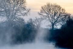 Lippenebel (webpinsel) Tags: flaesheim frühling halternamsee landschaft lippe morgenstimmung münsterland natur