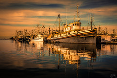 Split (Žèę Ķ) Tags: richmond water ocean seaside reflection dawn morning goldenlight seascape landscape dock harbour harbor boat vessel fishing stevestonvillage canada blue sky warm clouds cloudscape