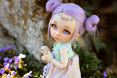 Exploring ☆ (Shimiro Kestrel) Tags: pukifee ante fairyland pukifeeante bjd abjd cute kawaii tiny tinybjd spring pastel pastelgirl bjdphotography bjdportrait bjdcustom dollphotography