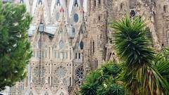 WP_20151005_17_03_53_Pro.jpg ('LPG') Tags: barcelona catalonia church europe lpg sagradafamília spain catalunya