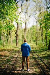 into the green (_gate_) Tags: austria vienna wien frühling spring österreich prater praterhauptallee sigma 35mm art 14 nikon d750 digital green grün sommer summer april 2017 europe eu europa donau danube lobau wald