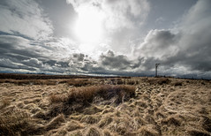 The Gibbet (JJFET) Tags: winters hill gibbet wallington northumberland harwood forest