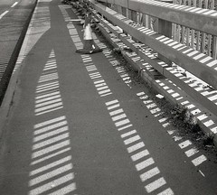 sliced (OhDark30) Tags: olympus 35rc 35 rc film 35mm monochrome bw blackandwhite bwfp monochome fomapan 200 rodinal pavement barrier fence shadow sidewalk