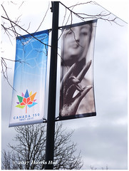 My Street Banner for Canada 150th Anniversary - Hazelbridge X5208e (Harris Hui (in search of light)) Tags: harrishui fujix10 digitalcompact fuji fujifilm vancouver richmond bc canada vancouverdslrshooter pointshoot mudra bodhisattva hand gesture streetbanner banner 150thanniversarycanada hazelbridgeway aberdeencentre honour