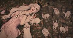 Alice... (Coqueta Georgia) Tags: violentseduction enfersombre ersch exile bluesky epiphany seasonsstory alice wonderland