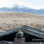 At Búðakirkja - an ice-chamber perhaps thumbnail