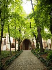 Basel, Switzerland (sarah_holls) Tags: gardens trees citybreak europe explore travel church switzerland basel