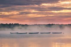 Misty Boats (explored) (Hibernia Landscapes (sjwallace9)) Tags: banbridge down sunrise lough lake boats mist