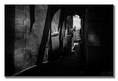 View at the end of the alley (G. Postlethwaite esq.) Tags: bw chianti italy montepulciano sonya7mkii sonyalphadslr tuscany alley arches blackandwhite fullframe lamp mirrorless monochrome photoborder plant stairs steps emount