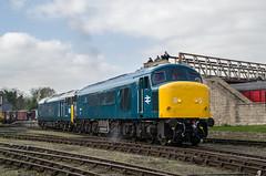 45041 & 50008 - Wansford, NVR - 07.04.2017 (Tom Watson 70013) Tags: nvr nene valley railway diesel gala wansford 45041 50008 thunderer royal tank regiment class45 class50