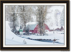 Red Barn Snowstorm, Jackson Hole (Daryl L. Hunter - Hole Picture Photo Safaris) Tags: redbarnsnowstorm jacksonhole