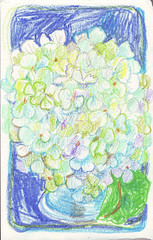 crayon 19 (ma_mix) Tags: hydrangea sketch sketchbook illustration drawing