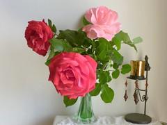 Χαρούμενα γενέθλια αγαπημένε μας Γιώργο!! (amalia_mar) Tags: γενέθλια λουλουδια birthday flowers flora τριαντάφυλλα διακόσμηση roses decoration