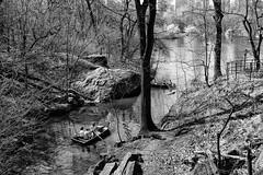 The Explorers (CVerwaal) Tags: blackandwhite centralpark thelake newyork ny usa theramble indiancave ramblecave rowboats fujifilmx100t