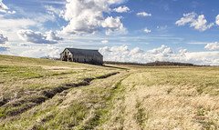 Under the Big Sky (SteveFrazierPhotography.com) Tags: barn wood wooden old dilapitated decaying field farm farmland farming agriculture illinois il chili clouds sky day daytime daylight afternoon springtime spring usa america midwest rural boards outdoor building landscape stevefrazierphotography