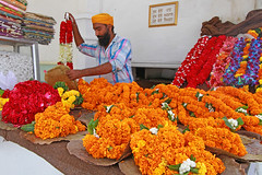 Flowers at the Gurudwara Bangla Sahib temple (Helen M Evans) Tags: flowers india temple sikh sikhism newdelhi sikhtemple gurudwarabanglasahib