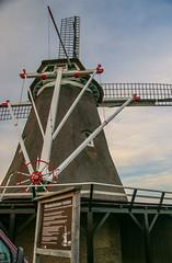 Windesheimer molen (1)