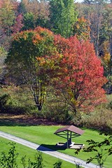 IMG_7370a (arda292000) Tags: trees mountains tree fall colors leaves golf leaf october colorful vibrant adirondacks september golfcourse upstatenewyork adirondackmountains vibrantcolors northeasternnewyork queensburyny hilandparkcountryclub