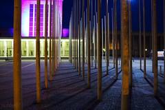 Iron Forest (picblin) Tags: street light urban berlin art festival architecture canon culture kontrast