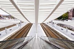 Gare des Guillemins (PoloTof Cocktail) Tags: station train high nikon key gare escalator guillemins d3100