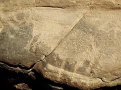 Ägypten (ursulazrich) Tags: sahara desert cattle egypt ägypten egitto rockart egypte petroglyphs kebir westerndesert gilf gravures paleolitico gravuren