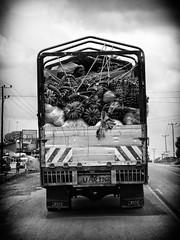 Matoke delivery (bindubaba) Tags: lorry uganda matoke