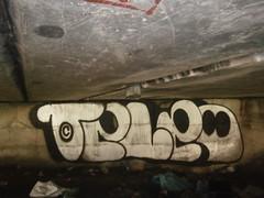tele (animaLE2015) Tags: silver ghost chrome crew tele 2014