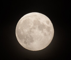 Full Moon (C) Oct 2014