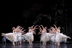 Cast change: Iana Salenko to dance in Swan Lake on 21 March 2015