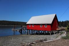 Big Red Shed (Jon Christall) Tags: blue red sea canada building beach loft seaside dock bc malcolm britishcolumbia shed malcolmisland netloft